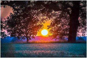 Blickling field sunset
