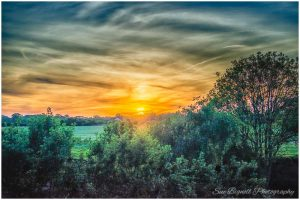 Poringland sunset